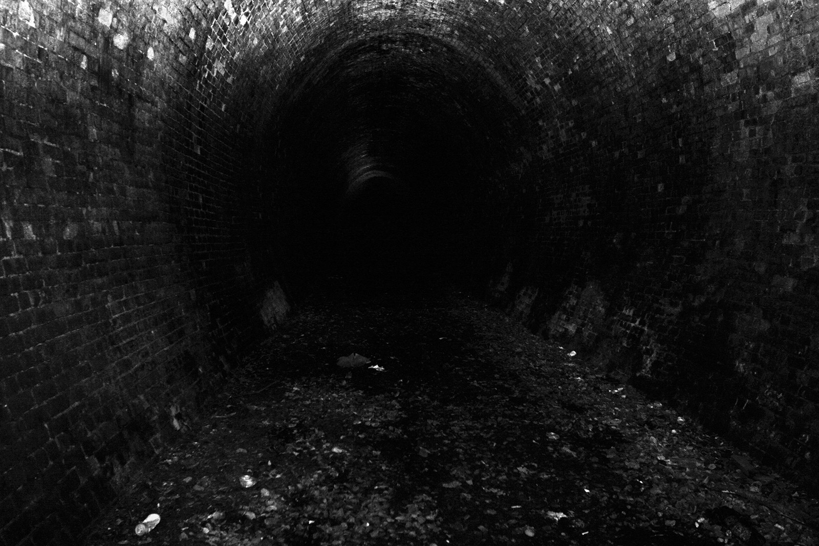 Neidpath tunnel 1
