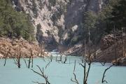 River Manavgat & flooded trees