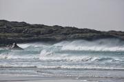Wind blown waves