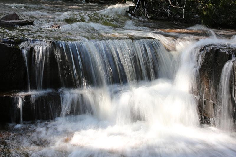 Joe Creek 1