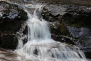 Joe Creek 2