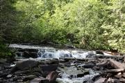 Joe Creek 4